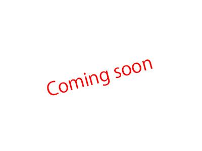 画像1: RedSea MAXnano用225ミクロンメッシュバック2ヶ入り (1)
