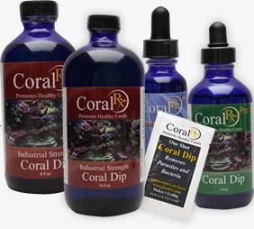 画像1: Coral RX Pro 1oz (1)